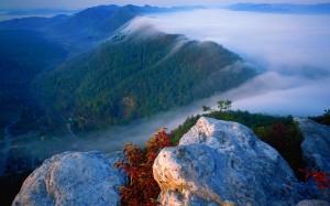 Fog in the Cumberland Plateau