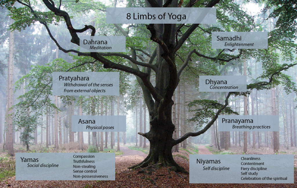 meme-8-Limbs-of-yoga