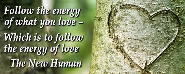 meme-follow-love