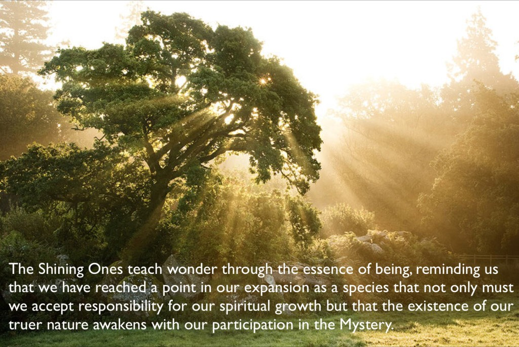 the shining ones teach