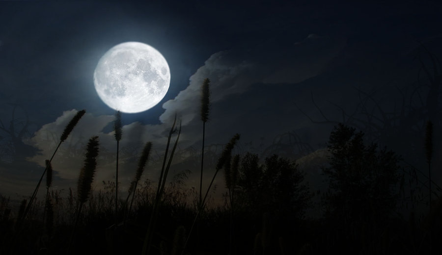 Rare Blue Moon Today | DeAnne Live