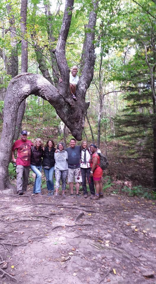 dragon tree Equionox 2015