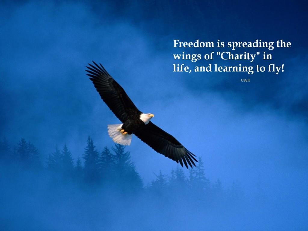 ws_Flight_of_Freedom_1440x900